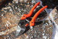 Lowe Anvil Pruners Photo